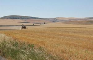 farmground image